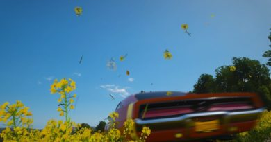 Red car driving through field of yellow flowers