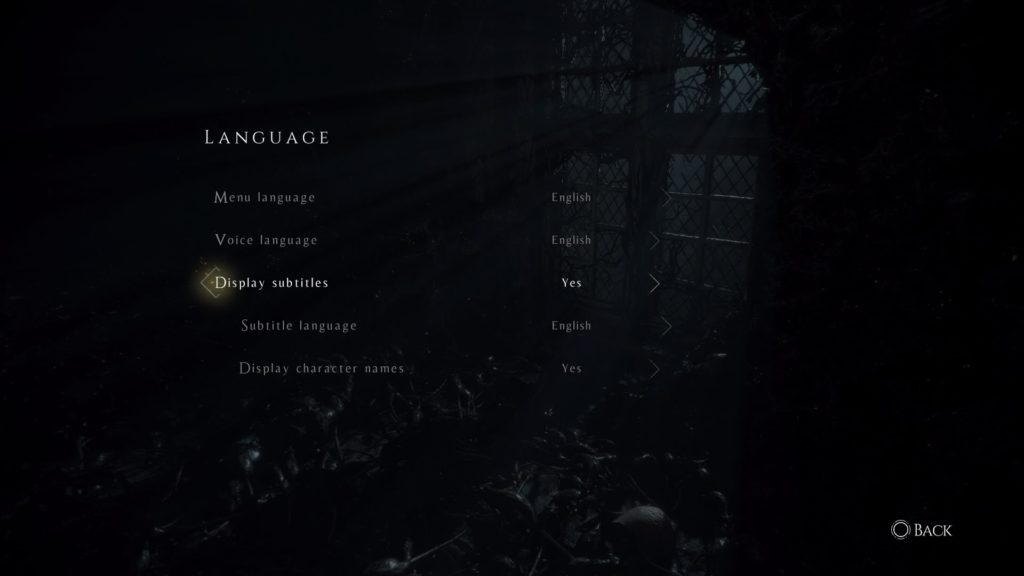 Language settings menu