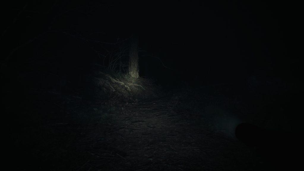 Very dark night time scene illuminated only by a faint flashlight.